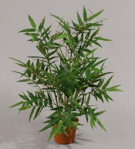 Bamboo (100-1)