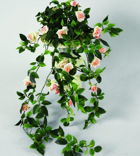 Mini Rose (127-1-09)