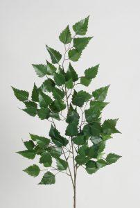 Gałązka Birch (391a)