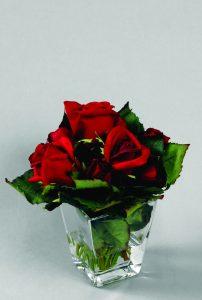 Rose (9522)