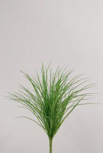 Grass Bush (9401)