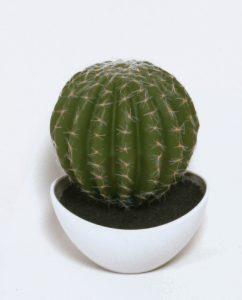 Cactus  (8103)
